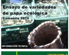 Ensayo de variedades de papa ecológica. Campaña 2016