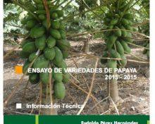 Ensayo de variedades de papaya 2013 – 2015 | Agrocabildo