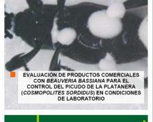 Control del picudo de la platanera, evaluación de productos comerciales | Agrocabildo