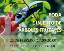 Poda e injerto de árboles frutales
