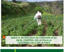 Ensayo de eficacia de Coragen 20 SC en el control de la polilla guatemalteca de la papa