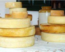 La Cámara de Comercio y el Cabildo promueven la apertura de nuevos mercados para los quesos palmeros