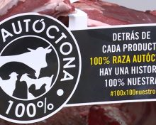 Agro Noticia Sello Vaca 100% Raza Palmera