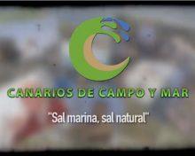 Sal marina, sal natural | Canarios de Campo y Mar