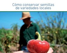 Cómo conservar semillas de variedades locales | Agrocabildo