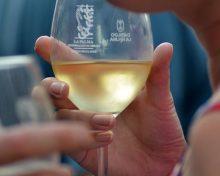 Fiesta del Vino con sabor a Verano | 3 de junio