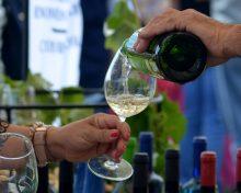 Breña Alta se prepara para recibir III Edición de 'La Fiesta del Vino con Sabor a Verano'