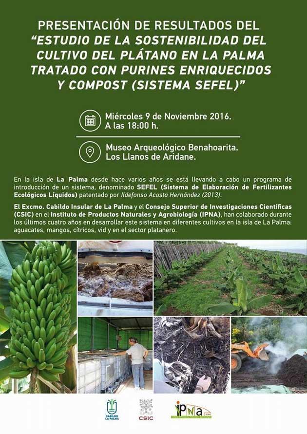 estudio-sostenibilidad-platano