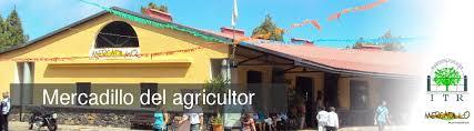 Mercadillo de Puntagorda @ Mercadillo de Puntagorda | Puntagorda | Spain