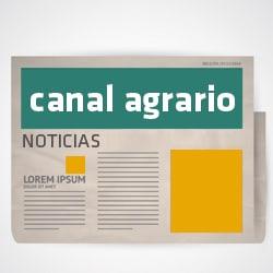 Fivipal @ Plaza de España | Los Llanos | Canarias | Spain