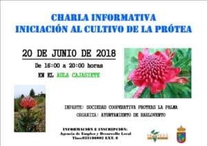 Iniciación al cultivo de la Próteas @ Aula Cajasiete | Barlovento | Canarias | España