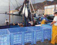 Subvenciones destinadas a gastos corrientes de las Cofradías de Pescadores, sus Federaciones y Cooperativas del Mar