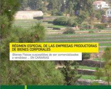 Régimen especial de las empresas productoras de bienes corporales | Agrocabildo