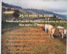 El Frescal celebra este sábado en Breña Alta la XIII Jornada de Siembra Tradicional con Arado