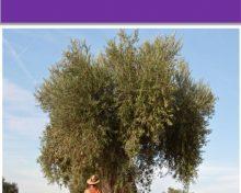 Manual informativo sobre la titularidad compartida de las explotaciones agrarias