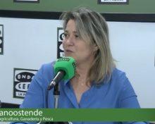 Repaso sector primario | Onda Cero La Palma