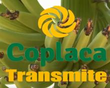 COPLACA Transmite La Prosperidad producto local