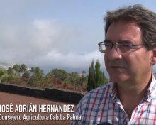 Entrevista Consejero Agricultura del Cabildo de La Palma: José Adrián Hernández | Canarios de Campo y Mar