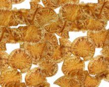 Zebra chip Candidatus Liberibacter solanacearum | Agrocabildo