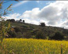 El Mundo Rural por su protección y futuro, urge estudiar y aplicar soluciones