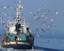 Subvenciones destinadas a inversiones en equipamiento para las Cofradías de Pescadores, sus Federaciones y Cooperativas del Mar