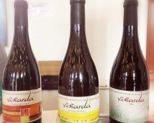 Un vino de La Palma (Viñarda Vijariego Negro 2018) entre los 5 mejores en la I edición GoVolcanic según Winemag.it