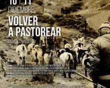 Volver a Pastorear